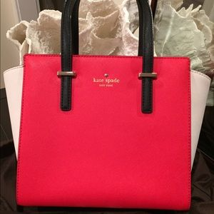 Mini Hayden Bag by Kate Spade